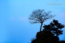 義経岩(高岡市)