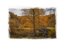 Donautal - Steinbrücke bei Beuron 6829