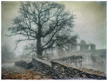 6414 Ruine Hohentwiel