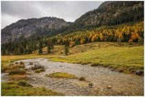 Landschaft im Tannheimer Tal - Tirol 0954