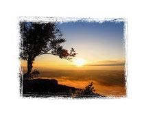 9171 Sonnenaufgang über dem Hegau