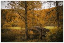 Donautal - Steinbrücke bei Beuron 6828