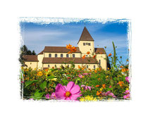 Insel Reichenau 8029