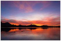 6304 Sonnenuntergang am Hopfensee