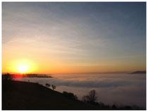 Hegau im Nebel 6235