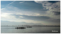 Bodensee 4931