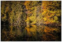 1378 Herbstliche Spiegelung in Bad Faulenbach bei Füssen