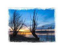 Insel Reichenau 6812