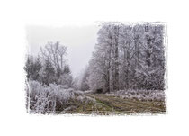 Winterlandschaft im Hegau 2099