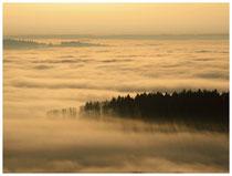 Hegau im Nebel  6200