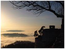 Hegau im Nebel 6187