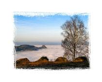 6147 Hohenkrähen im Nebel