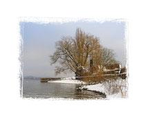 Insel Reichenau 0346