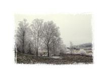 Winterlandschaft im Hegau bei Stockach 2132