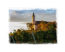 Klosterkirche Birnau 8245