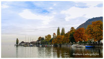 Bodman-Ludwigshafen 3309
