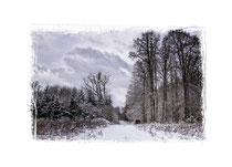 Winterlandschaft im Hegau 2257