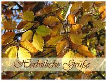 Laub Herbstliche Grüße 3657a