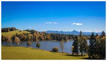 6374 Schwaltenweiher - Stauweiher zwischen den Gemeinden Seeg und Rückholz