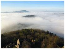 Hegau im Nebel 5998
