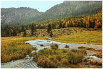 Landschaft im Tannheimer Tal - Tirol 0985