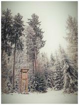 Winterlandschaft im Hegau 7728