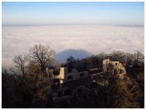 Hegau im Nebel 6084
