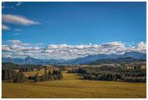6419 Landschaft im Ostallgäu mit Blick auf die Allgäuer Alpen