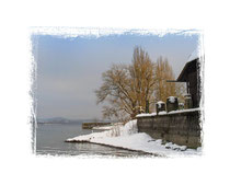 Insel Reichenau 0350
