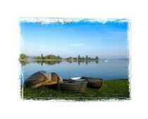 Insel Reichenau 9567