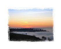 6275 Der Hegau im Nebel