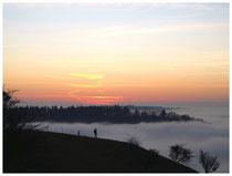 Hegau im Nebel 6275