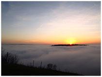 Hegau im Nebel 6249