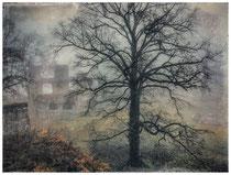 6408 Ruine Hohentwiel