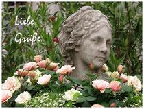 Rose 9836
