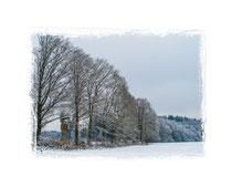 Winterwald 0700