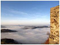 Hegau im Nebel 6164