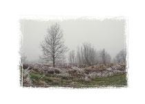 Winterlandschaft im Hegau 2088