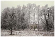 Winterlandschaft bei Stockach 2527