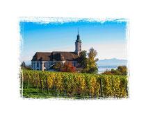 Klosterkirche Birnau 3151