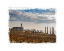 Klosterkirche Birnau 7400