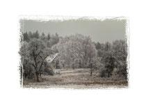 Winterlandschaft bei Stockach 2524