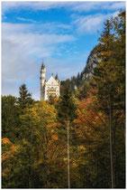 Schloss Neuschwanstein 1084