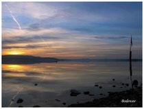 Insel Reichenau 0930