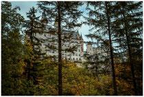 Schloss Neuschwanstein 1077
