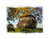 Insel Reichenau 8138