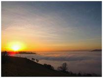 6235 Der Hegau im Nebel