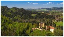 8791 Blick auf Hohenschwangau