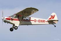 Piper PA-18-95 Super Cub (D-EKAY)