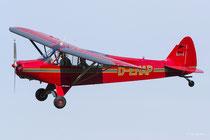Piper PA-18-95 Super Cub (D-EHAP)